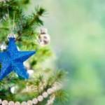 Weihnachtsbaum kaufen: Zertifizierter Baum ist die bessere Wahl