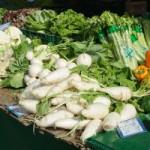 Bio Lebensmittel: Was ist unter Bio zu verstehen?