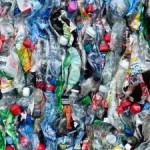 Abfall entsorgen: Mülltrennung heute eine Selbstverständlichkeit
