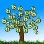 Ökobanken Vergleich – warum du dein Geld nachhaltig anlegen solltest