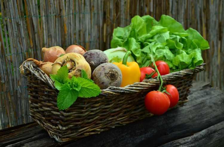 vegetables 752153 1280