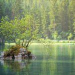 Ökotourismus – Vorteile für Mensch und Umwelt