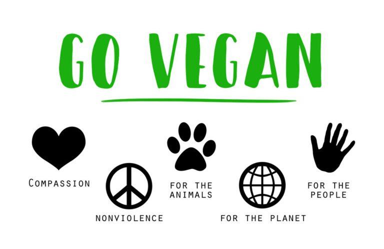 Vegane Online-Shops